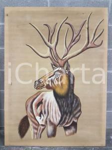 1975 CINA VINTAGE Primo piano testa di alce - quadro 85 x 115 cm