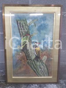1975 CINA VINTAGE Picchio verde e giallo su un tronco - quadro 49 x 69,3 cm