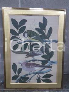 1975 CINA VINTAGE Uccelli posati su rami - quadro 61,5 X 82,3 cm