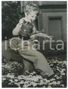1952 SWEDEN Young Crownprince Carl Gustav among the flowers - Photo 15x20 cm