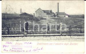 1902 FOLIGNO Stabilimento per industria degli zuccheri - Cartolina Onorino LUCAT