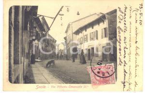 1910 SACILE (PN) Via Vittorio Emanuele III - Cartolina ANIMATA CANE RARA FP VG