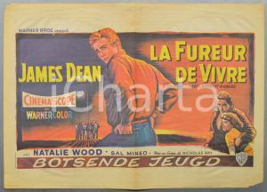 1955 LA FUREUR DE VIVRE Rebel without a cause - James DEAN Manifesto 58x41 cm