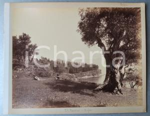 1900 ca GREECE CORFU Island - KANONI - Albumen old photo 30x24 cm ANIMATED
