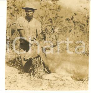 1930 ca CONGO BELGA - CACCIA - Uomo con antilope uccisa - Foto 7x7 cm