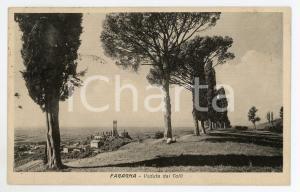1930 FAGAGNA (UD) Veduta dai colli - Cartolina FP VG