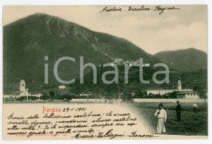 1901 PERGINE VALSUGANA (TN) Panorama del paese - Cartolina ANIMATA FP VG