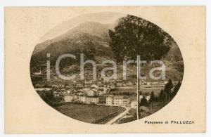 1920 PALUZZA (UD) Panorama del paese - Cartolina FP VG
