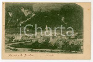 1901 PONTEBBA Panorama del paese - Cartolina FP VG
