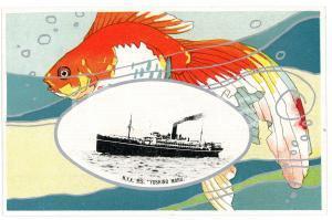 1920 ca JAPAN NYK Nippon Yusen Kaisha - S.S. YOSHINO MARU *Postcard ship fish