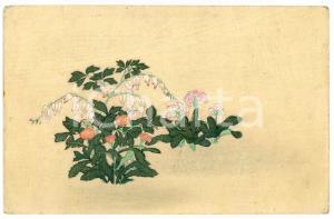 1900 ca JAPAN Flowers - Illustrated old postcard
