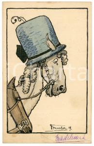 1919 ANIMALS Horse with hat ANTHROPOMORPHIC Postcard FP NV