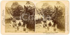 1890 CORDOBA (MEXICO) Coffee plantation - ANIMATED Stereoview JARVIS