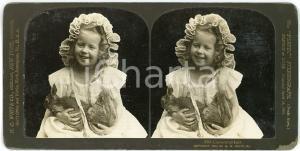 1904 USA CHILDREN Little girl and rabbits - Captured at last - Stereoview WHITE