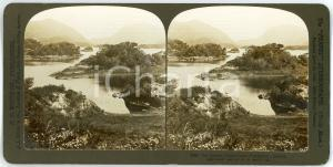 1902 Lake of KILLARNEY (IRELAND) The Islands - Stereoview WHITE 2680