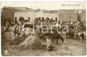 1914 TRIPOLI Mercato d'erba - Cartolina ANIMATA FP VG
