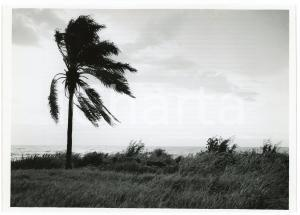 1949 BURUNDI Tornade sur le lac TANGANIKA - Photo J. MULDERS 18x12 cm