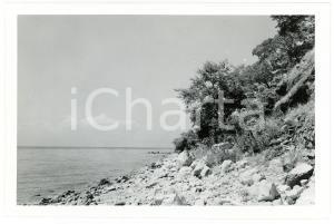 1949 RUANDA - NYANZA - La rive du lac TANGANIKA - Photo J. MULDERS 18x12 cm