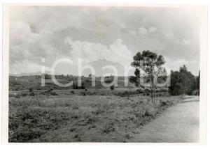 1945 RUANDA - Nord de RUHENGERI - Volcan SABINYO - Photo A. VAN DEN HEUVEL 18x12