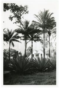 1946 CONGO - GOMA - Maison près du Lac KIVU - Photo E. LEBIED 18x12 cm