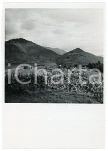 1946 RUANDA - RUHENGERI - Cultures près du lac BULERA - Photo LEBIED 12x18 cm