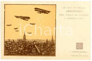 1918 WW1 Ali d'Italia ammonitrici nel cielo di Vienna - Cartolina commemorativa