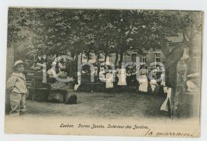 1906 LAEKEN Ferme Jacobs - Intérieur des Jardins - Carte postale FP VG