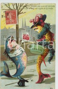 1910 ca ANIMALS Fishes at first date ANTHROPOMORPHIC Postcard FP VG