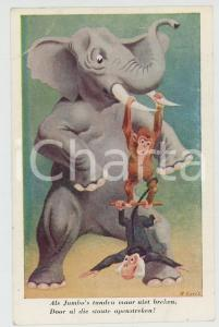 1910 ca ANIMALS Artist R. GORIS Monkeys and elephant equilibrists - Postcard FP
