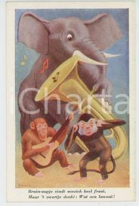 1910 ANIMALS Artist R. GORIS Elephant and monkeys playing instruments - Postcard