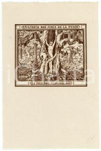 1910 ca Jeanne HOVINE Ex Libris Amis de la Forêt de Soignes - Nude woman *Cliché