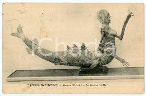 1914 OSTENDE - MARIAKERKE Musée Stracké - La Sirène de Mer - Carte postale FP VG