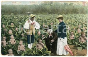 1915 Children running out of cabbages - Old chromo postcard