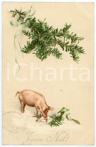 1913 JOYEUX NOËL! - Pig with holly sprig - Vintage postcard
