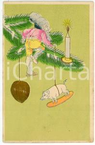 1900 ca CHRISTMAS - Gnome on Christmas tree branch - Embossed Postcard