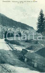1929 RAVASCLETTO Panorama e veduta della strada in VALCALDA Cartolina FP VG