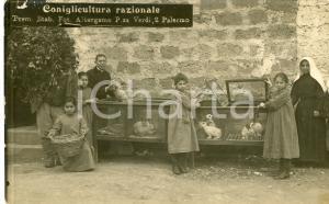 1920ca BOCCADIFALCO Colonia agricola orfane di guerra - Coniglicultura CARTOLINA