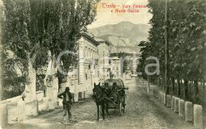 1908 TRENTO Carrozza in Viale Fersina - Monte Gazza - Cartolina ANIMATA FP VG