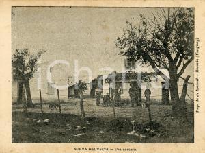 1900 ca NUEVA HELVECIA (URUGUAY) Una queseria - Cartolina ANIMATA NV