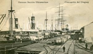 1919 CONCEPCION DEL URUGUAY Darsena Sección Ultramarinos - Cartolina ANIMATA