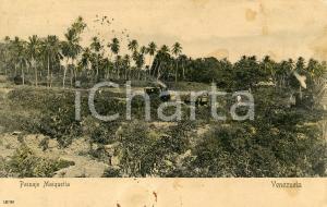 1905 MAIQUETIA (VENEZUELA) Veduta panoramica - Cartolina postale DANNEGGIATA