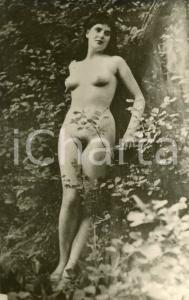 1930 ca EROTICA VINTAGE Donna nuda posa in un bosco - Fotocartolina seriale