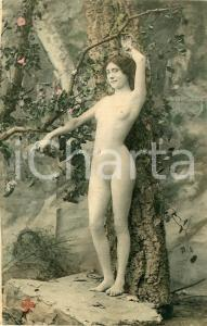 1910 ca VINTAGE EROTIC French nude woman close to a tree - Postcard risque