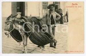1909 SEVILLA Costumbres del pais - Man with a donkey - Postcard FP VG