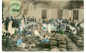 1910 SMYRNE (TURQUIE) Travail de figues - Carte postale FP VG