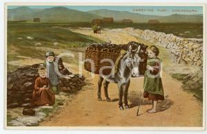 1920 ca CONNEMARA (IRELAND) Children carrying turf with a donkey - Postcard FP