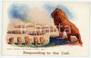 1930 ca COMMONWEALTH Responding to the call - Lion and his cubs - Postcard FP NV