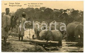 1924 CONGO BELGE Les élèphants au bain - Carte postale FP VG
