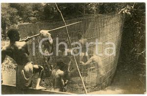 1930 ca AFRIQUE - CONGO BELGE Mosengere à la peche - Carte postale FP NV