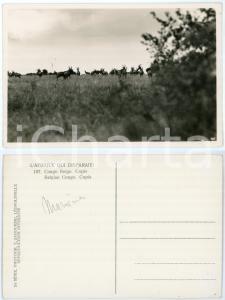 1930 C. ZAGOURSKI «L'Afrique qui disparaît» CONGO BELGE - Copis *Postcard n.187